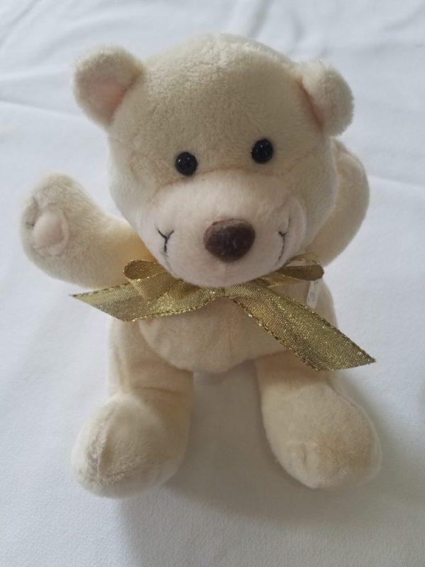Posable Stuffed Bear