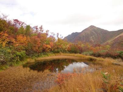池塘@八海山