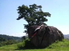みまもり岩