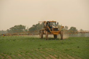 1264_Rogator_Spraying_Corn