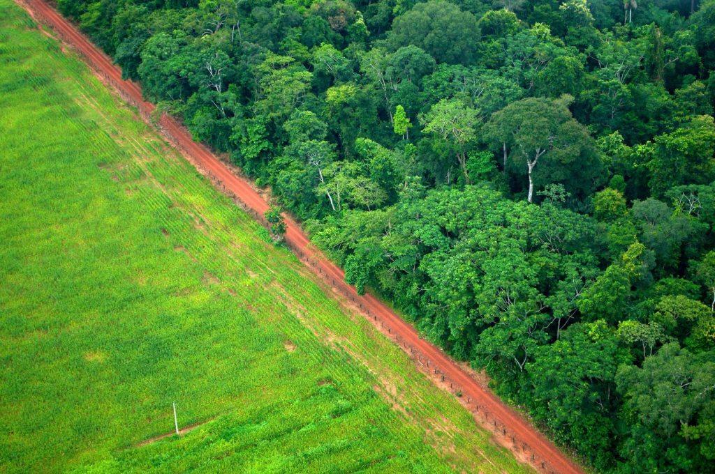 La deforestación es uno de los principales fuentes de emisión del sur global, en zonas como esta en Rio Branco, Acre, Brasil. Los INDC prometen reducir esto de cara al 2030.