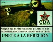 comite defensa asturias
