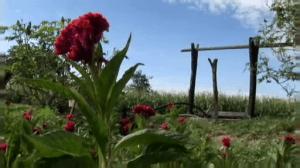 sembradores de agua y vida