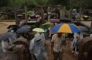 it's raining men !