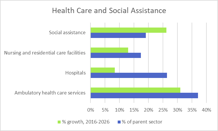 Health Care and Social Assistance Industry Segments