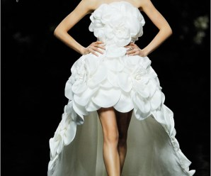 Magical wedding dresses collection Pronovias 2013