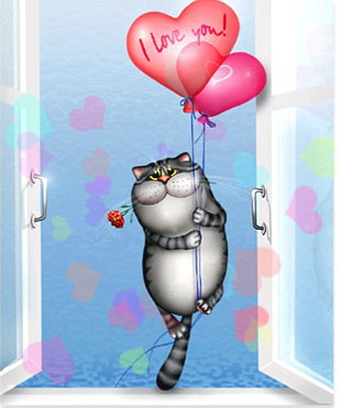 funny valentines day cat