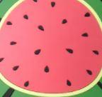 Watermelon Medallion