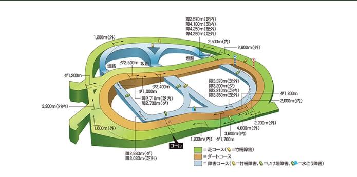 中山競馬場 コース 傾向