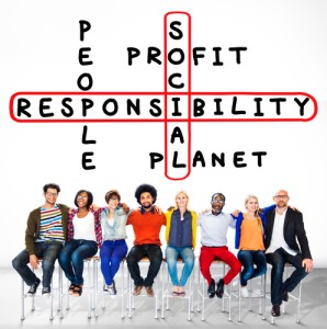 MVO 3 P's People Planet Profit