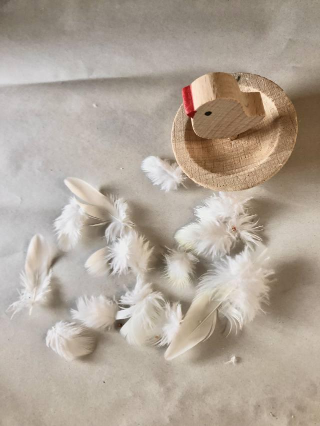 オカメインコの換羽期の羽