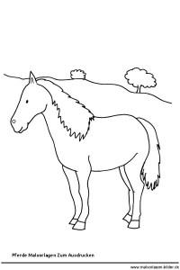 32 filly pferde ausmalbilder - besten bilder von ausmalbilder