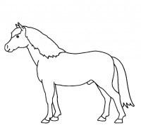 √ malvorlage pferd reiterin | 99 inspirierend ausmalbilder
