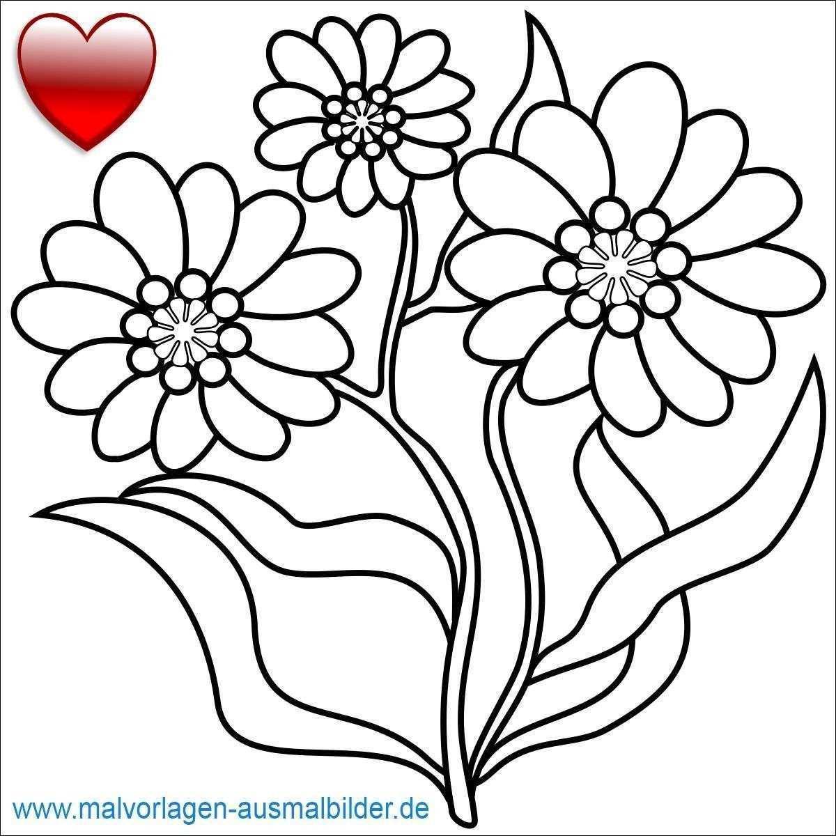 97 Einzigartig Ausmalbilder Schmetterling Mit Blume