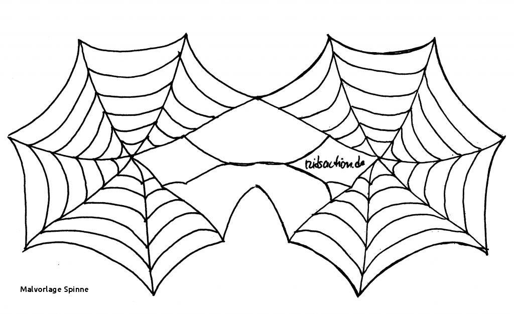 Halloween Ausmalbilder Spinne Inspirierend Malvorlage