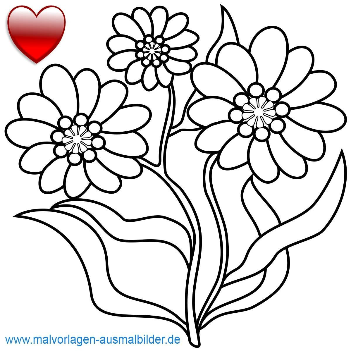 Malvorlagen Blumen Ranken Kostenlos Neu Karte Blumen