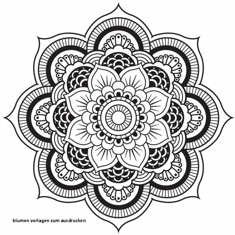 Mandala Zum Ausdrucken Rosen Neu Rose Herz Malvorlage