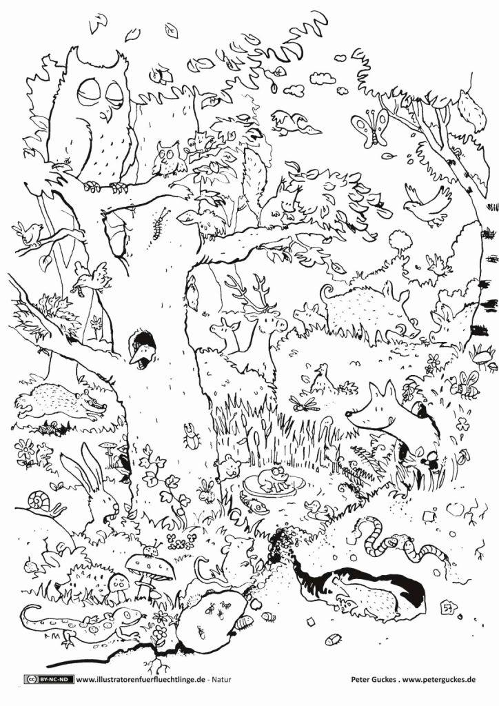 Pegasus Zum Ausmalen Neu Janbleil Ausmalbilder Fa¼r Kinder