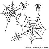Spinnennetz Mit Spinne Malvorlage Neu Malvorlagen Und ...