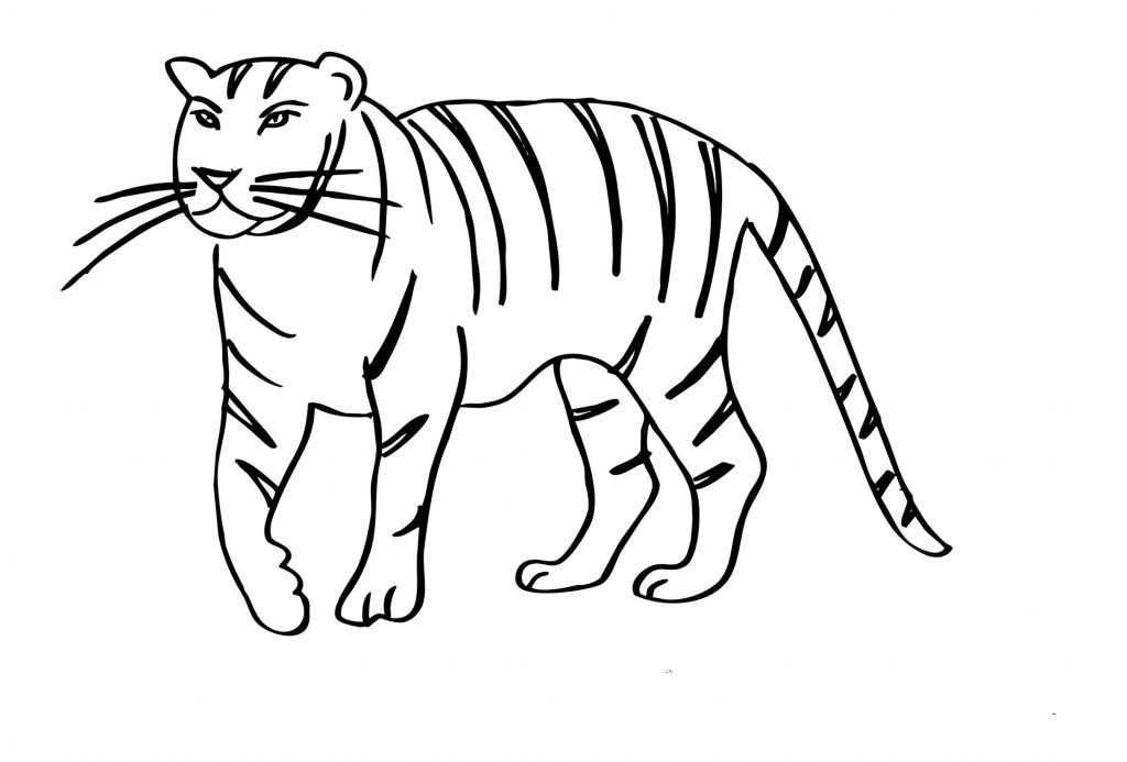 T Rex Malvorlage Einzigartig Malvorlagen Tiger Das Beste