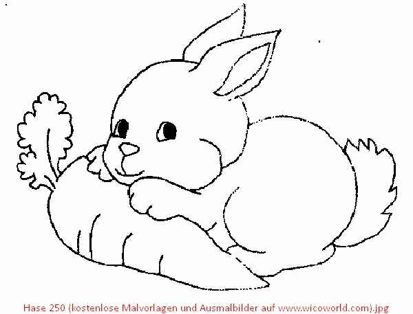 Ausmalbilder Hase Frisch Hasen Mandalas Zum Ausdrucken Das