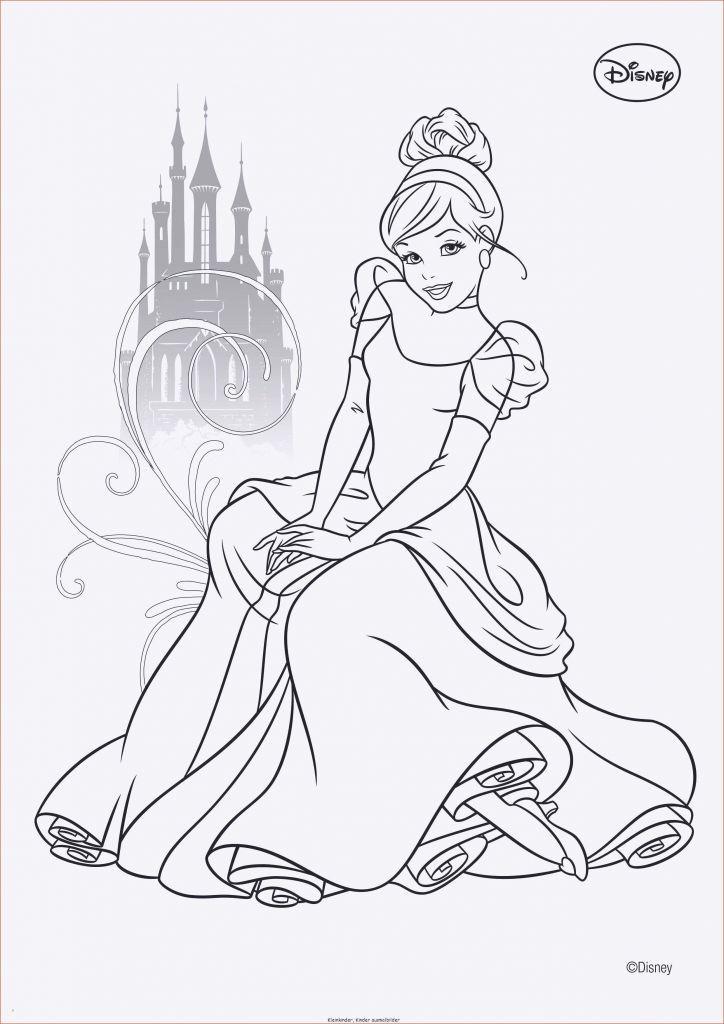 Ausmalbilder Prinzessin Schloss Neu 100 Disney Schloss