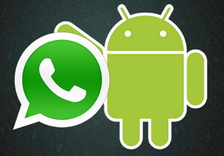 whatsapp-android-moviles-tablets