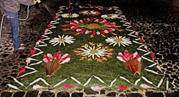Flower Alfombra (3) - Antigua Guatemala