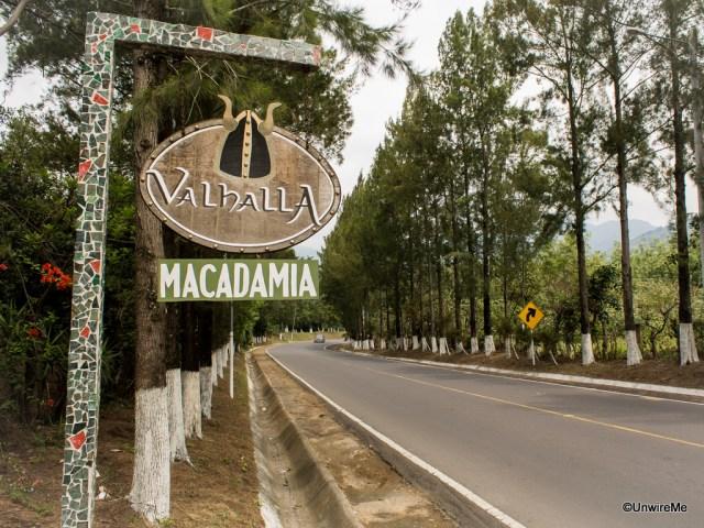 Valhalla Macadamia Nut Farm Antigua Guatemala