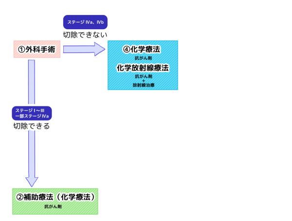 膵臓がん治療の流れ チャート図 ①外科手術