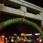 玉比咩神社、輪くぐり祭に行ってきたよ!