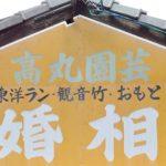 岡山市でレトロな結婚相談所と、家政婦紹介所の建物を見つけたよ!