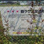 【巨大】NHK錦ラジオ放送所を見てきたよ!