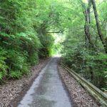 【激ヤバ!?】常山城への車道を紹介するよ!