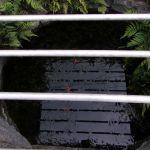 【倉敷市】玉島乙島の泉谷の大井戸を見てきたよ!