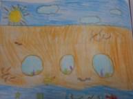Scuola Primaria Cavernago BG (5)