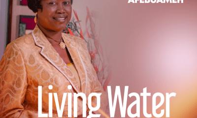 Living Water - Funmi Afebuameh
