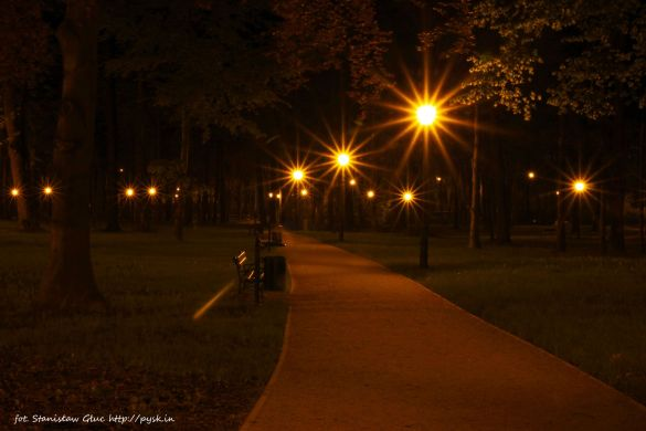 Park Dolny