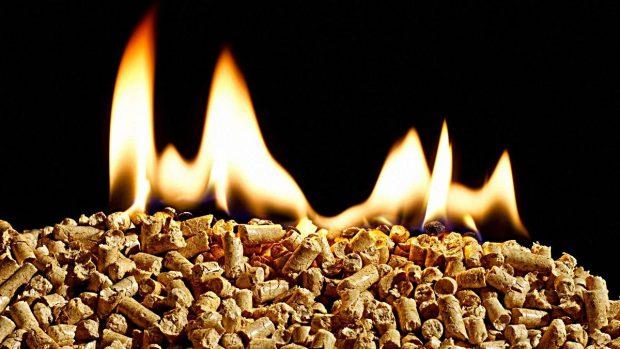 energías renovables mejores biomasa