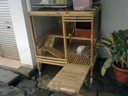 membuat kandang kelinci