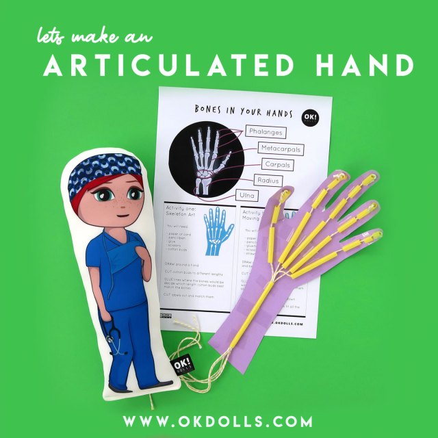 easy BIOLOGY kids science activity inspired by our OK!Dolls