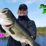 Lake Okeechobee Big Bass Fishing Adventures- Clewiston FL