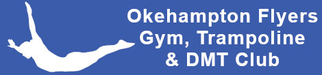 Okehampton Flyers Club Logo