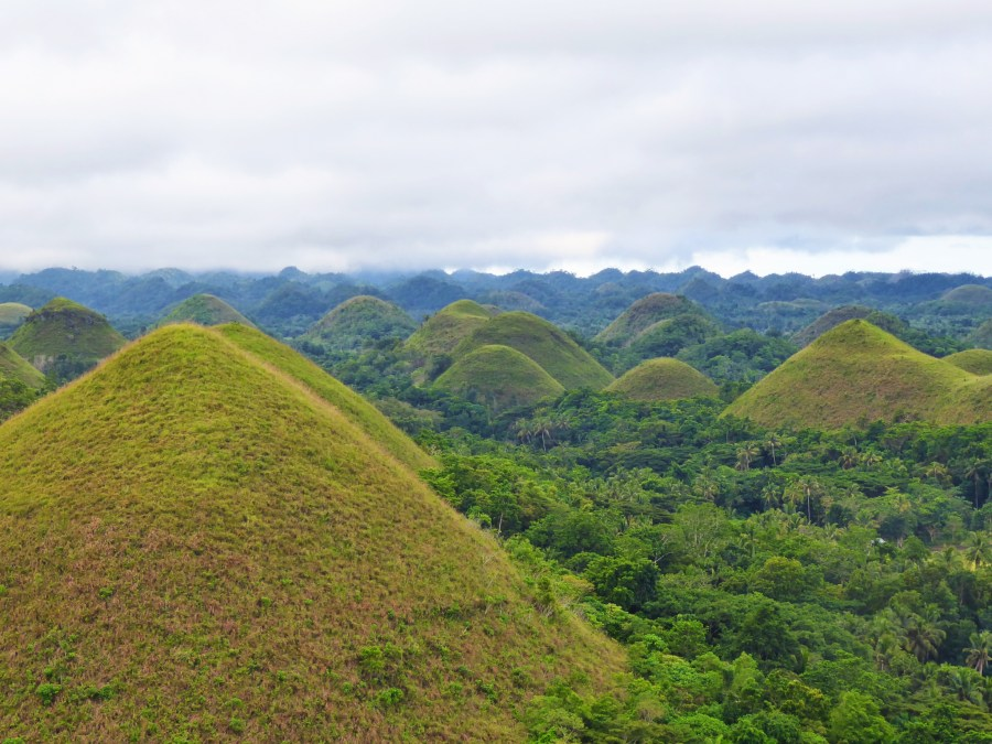 Conical shaped Chocolate Hills.