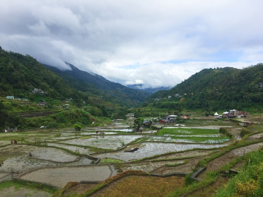 Huandung rice terraces.