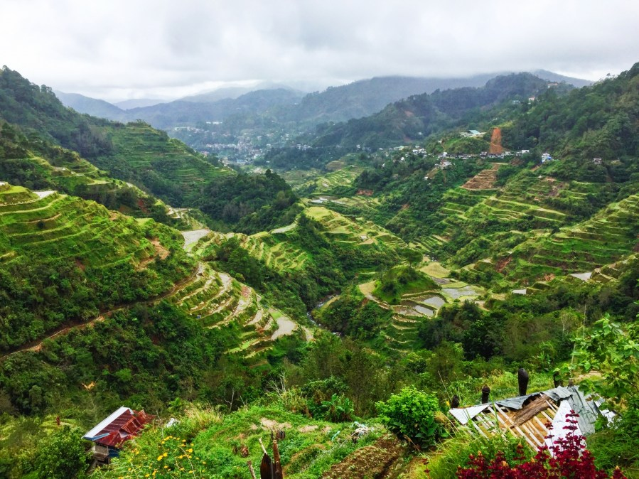 Viewpoint over Banaue rice terraces
