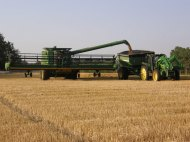 Our combine dumping wheat into the grain cart.