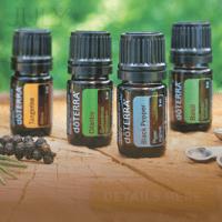 dōTERRA Essential Oils for Healthy Living and Cooking — Summer Sensations Blender Salsa