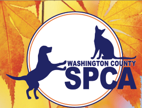 Liverpool Legends Concert to Benefit Washington County SPCA Tickets Available Now! PreConcert Party for Sponsors