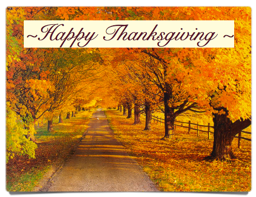 Plenty To Be Thankful For